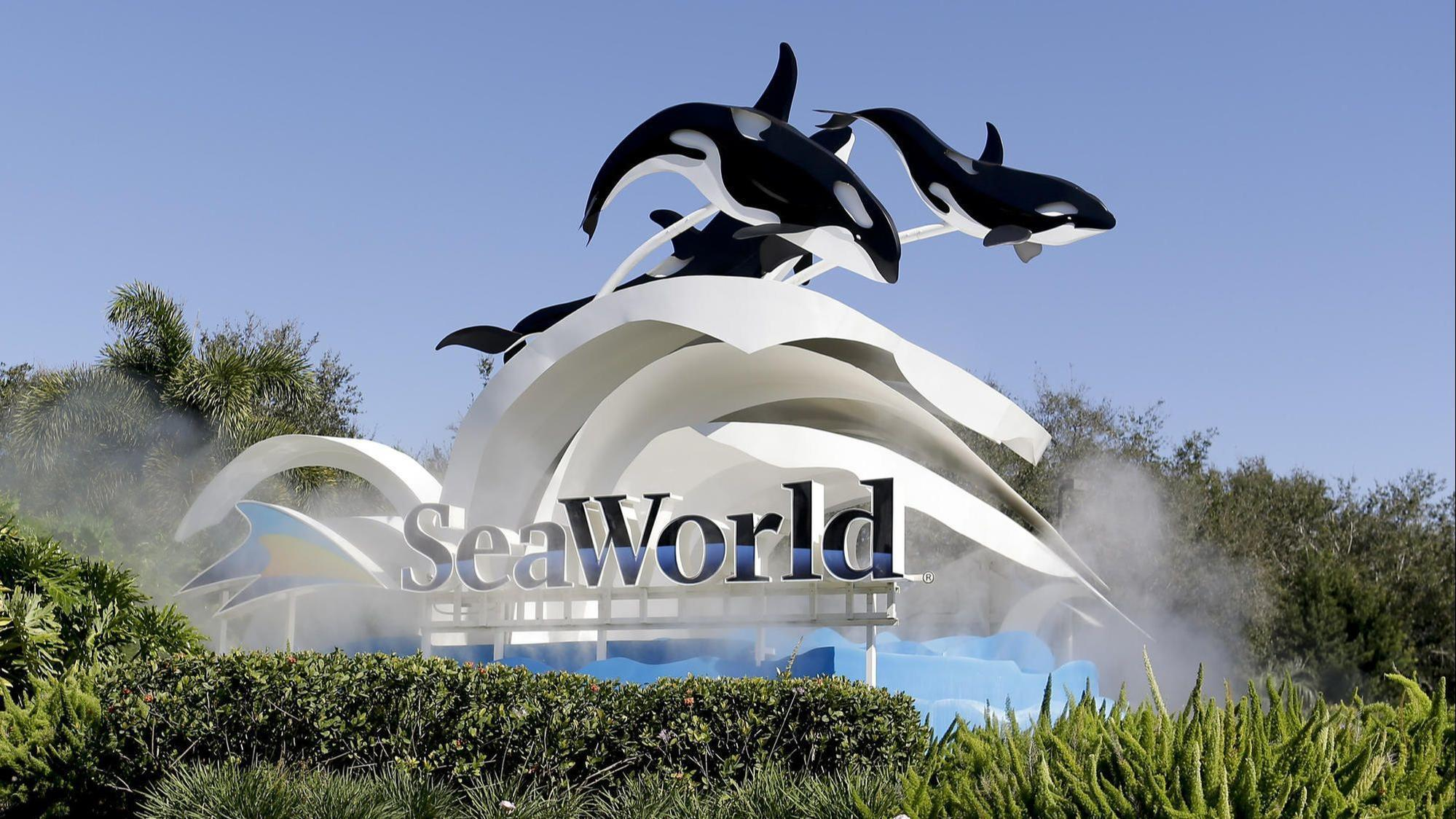 SeaWorld gives July reductions on tickets, Christmas experiences