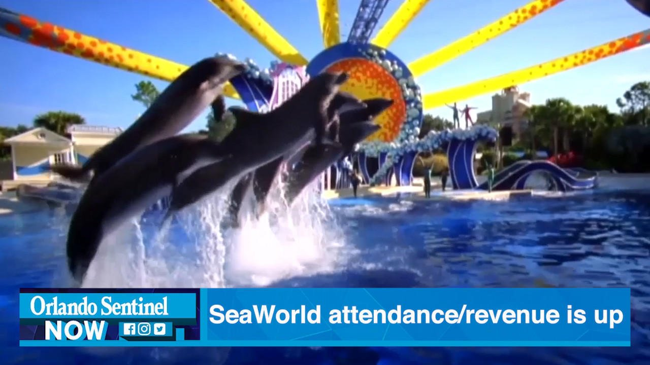 Orlando-based SeaWorld could be sold to Six Flags, report says